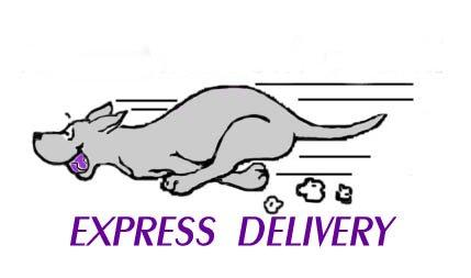 expressdeliverylogo